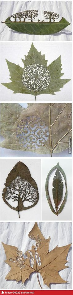 Leaf Art - it looks Elven, like something out of Middle Earth. This is just gorgeous.