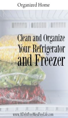 Clean and organize your freezer and find an abundance of hidden treasures for meal planning that will save money!