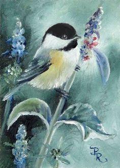 Paulie Rollins Bird Pictures, Pictures To Paint, Pretty Birds, Beautiful Birds, Bird Drawings, Little Birds, Art Portfolio, Watercolor Paintings, Bird Paintings