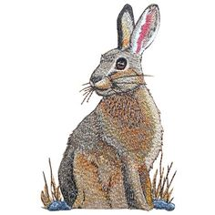 wildlife015 - Jack Rabbit Machine Embroidery Design