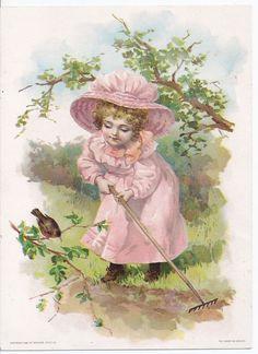 1894 Victorian Trade Card Lion Coffee Girl Robin Woolson Spice Co Toledo Ohio | eBay