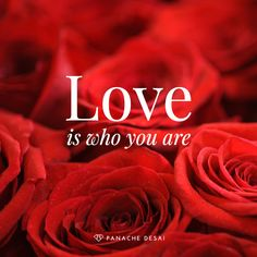 """Panache Desai: """"The truth is that you are already the perfect embodiment of love. It is who you are deep within."""""""