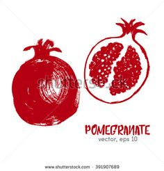 Sketched fruit illustration of pomegranate. Hand draw brush food ingredient. Vector bio eco icon, logo design template. Concept for organic products, harvest, healthy food, vegetarian, raw food diet.