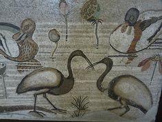 Roman Mosaic. Birds. Pompeii, Italy.
