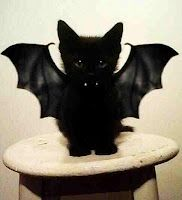 Bat Kitty - hahaha! I have tons of black cats to do this with - you might have to watch out for a flock of bat kitties at my house next halloween!