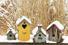 Birdhouse village brightens up a long winter