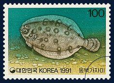 THE FISH SERIES 6, ring flounder, marine life, green, gray, 1991 06 08, 어류시리즈(여섯번째묶음), 1991년 06월 08일, 1648, 동백가자미, postage 우표