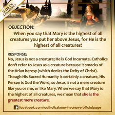 Mary was given the grace at her own conception to avoid sin and become the new ark of the covenant in order to carry Jesus inside her own being as a pure and holy vessel.