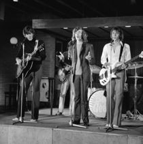 Too Much Heaven: The Music and Memories of the Bee Gees