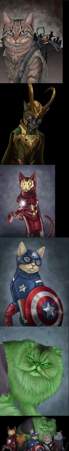 The Catvengers. Though I'm pretty sure that's a Deryl Dixon cat at the top instead of Hawkeye.