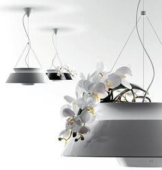 Immagine di http://cdn.trendir.com/wp-content/uploads/old/archives/flower-pot-lighting-pendant-lamp-eden-torremato-4.jpg.