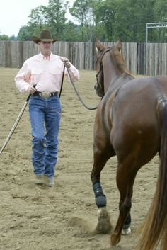 Clinton Anderson explains how to get your horse's respect