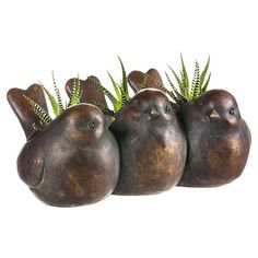 Grow a set of succulents or a miniature fern in this chubby, cheerful planter, perfect for the kitchen windowsill or the sunroom etagere.  ...