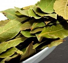 FOGLIE DI ALLORO, DELICATEZZA NEL PIATTO  Le foglie di alloro - o Lauro - sono conosciute fin dai tempi dell'antichità, anche perchè utilizzate come ornamento per eventi e personalità importanti - ricordate le corone di foglie di alloro? - , e hanno assunto via via importanza nel tempo sia per le loro proprietà terapeutiche (in infusione è un ottimo rimedio per alleviare dolori di stomaco), sia per l'utilizzo che se ne può fare in cucina.