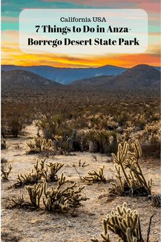 A list of things to do in the Anza-Borrego Desert State Park (California, USA) including hikes, sunset spots, wildlife and more. This is the largest state park in the contiguous US, there is a lot to do! #anzaborrego #california #desert #californiadesert