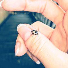 Ladybug Friend | Instagram photo by @strawberrygoodness