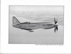 Tsunami Racer - Looks almost like the Gee Bee met the Mustang
