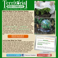 Season Extenders for your summer garden - Territorial Seed Company