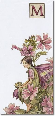 Cicely Mary Barker - A Flower Fairy Alphabet - The Mallow Fairy Archival Fine Art Paper Print