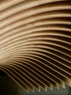ceiling from the TREE Restaurant by Koichi Takada Architects