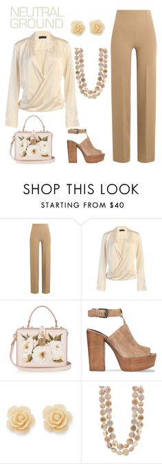 """""""Untitled #484"""" by taylorastamp ❤ liked on Polyvore featuring Emilia Wickstead, Dolce&Gabbana, Rebecca Minkoff and Draper James"""