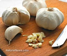 Suppressed science: Garlic proven to kill brain cancer cells without side effects