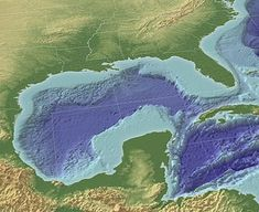 BP oil spill - not leaking well heads in gulf of Mexico Andrew Jackson, Earth Science Activities, The Dead Zone, Bp Oil, Oil Spill, Earth From Space, Water Quality, Gulf Of Mexico, Parcs