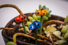 A personal favorite from my Etsy shop https://www.etsy.com/listing/222828537/fairy-garden-glass-ladybug-set-fairy