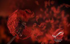 Hlasujte o nejhezčí wallpaper ze soutěže Asus ROG