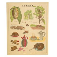 Le Cacao by Vintage Advertising Art Prints, Posters & Custom Framing from Australia's own PictureStore. Cacao Chocolate, Belgian Chocolate, Chocolate Lovers, Chocolate Cake, Cocoa, Le Cacao, Egg Cake, Cacao Beans, Borders For Paper