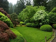 Portland Japanese Garden – 2020 All You Need to Know BEFORE You Go (with Photos) – TripAdvisor – Japanesegarden Tropical Landscaping, Front Yard Landscaping, Tropical Flowers, Palmers Garden Centre, Portland Japanese Garden, Bonsai Garden, Bonsai Trees, Deciduous Trees, Woodland Garden