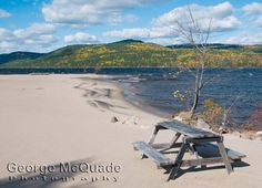 Photographer/Artist: George McQuade - Prints and Greeting Cards / Lovely beaches in Deep River,Ontario