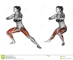 Fitness Exercising. Side Lunges. Female - Download From Over 45 Million High…