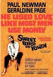 Sweet Bird of Youth (1962) – Filme online gratis
