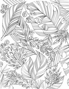 autumn leaf coloring page Leaf Coloring Page, Fruit Coloring Pages, Coloring Pages For Grown Ups, Abstract Coloring Pages, Heart Coloring Pages, Quote Coloring Pages, Coloring Pages Inspirational, Free Adult Coloring Pages, Disney Coloring Pages