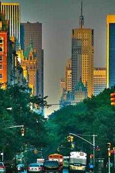 Fifth Avenue sunrise NYC
