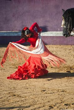Arte Ecuestre Flamenco by El ignorante feliz, via Flickr