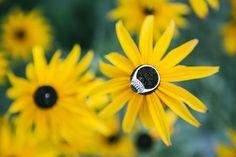 awesome vancouver wedding Flower Power #wedding #weddinginspiration #weddingplanner #weddingphotography #weddingphotographer #eventplanner #yvr #igers #instagood #instalove #instamood #instadaily #portrait #photoshoot #photographer #photooftheday #summer #style #follow #fashion #girl #bride #ring #weddingring #love #vancity #vancouver #vancitybuzz #vancouverphotographer by @robinnuber  #vancouverflorist #vancouverwedding #vancouverweddingjewellery #vancouverwedding