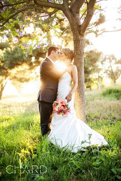 So romantic and such gorgeous light! LOVE!   #kiss #wedding #photography