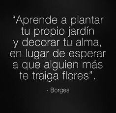 Aprende a plantar tu propio jardín y decorar tu alma...