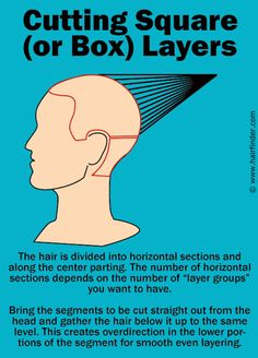Free Printable Head Sheet Hair Pinterest Free