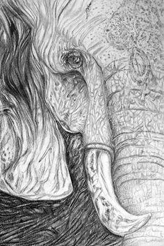 Elefante elaborado en lapiz. A3.