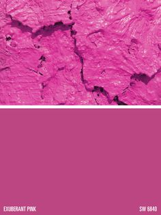 Exuberant Pink Paint Color Sw 6840 By Sherwin Williams View Interior And Exterior Colors Palettes