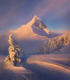 Clearing by Marc  Adamus, via 500px
