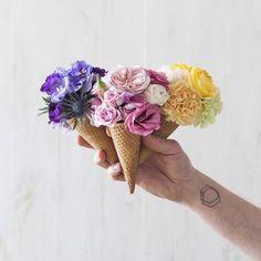 #kwiaty&miut poznań Poland