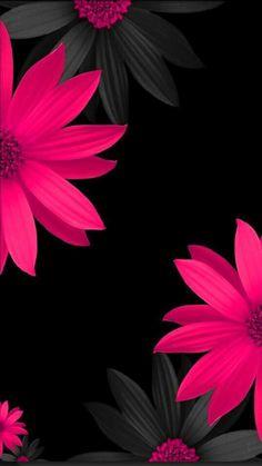 Black And Blue Flowers Wallpaper Flowery Wallpapers Pinterest