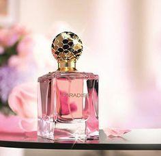 58 Inspiring Dr Parfume Artikel Images Fragrance Perfume Adidas