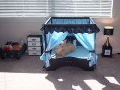 cat bed upside down table | Sew DoggyStyle: Friday Finds: Pet Beds