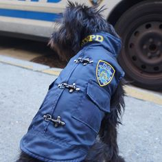 Royal Animals Authentic Licensed Water-Resistant Fleece-Lined Blue NYPD Dog Coat Royal Animals, Dog Coats, Dog Supplies, Pet Clothes, Pets, Blue, Water, Gripe Water, Coats For Dogs