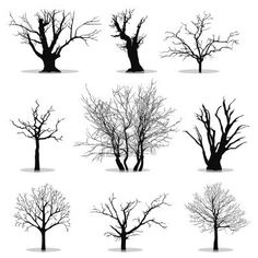 Collection Of Trees Silhouettes that would be used as wall decals.